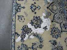 Cleaning Rug Pet Stain Etobicoke